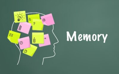 Improve Your Memory With This Magic Formula